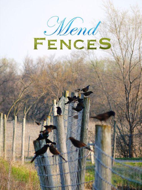 7 lotsa birds fence MaestroBen