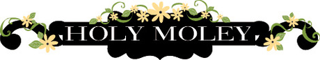 Holy_moley_header